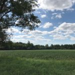 Southeast Michigan Farmland